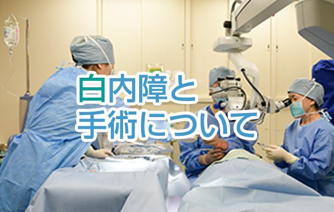白内障と手術について